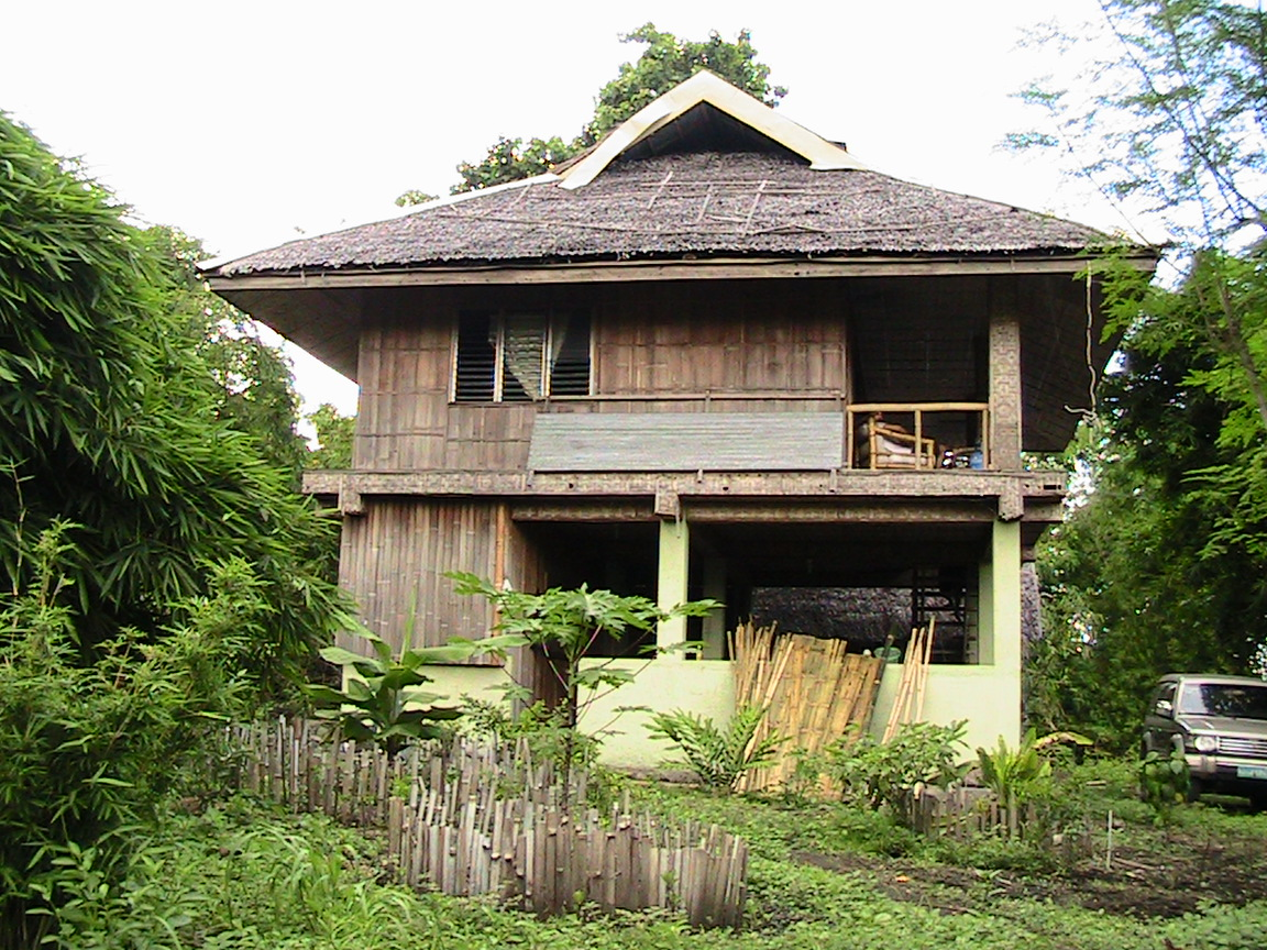 Bamboo house philippines houses plans designs for Home designs philippines
